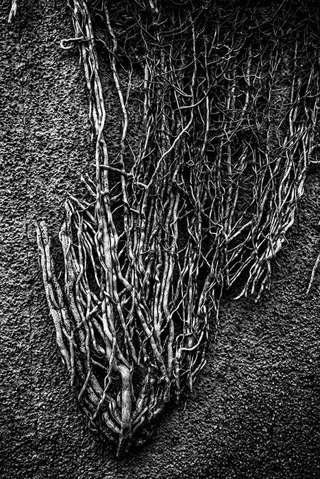 photoblog image wall texture
