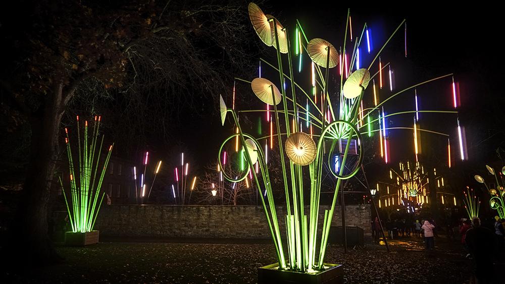 photoblog image highlights from this year's Lumiere at Durham